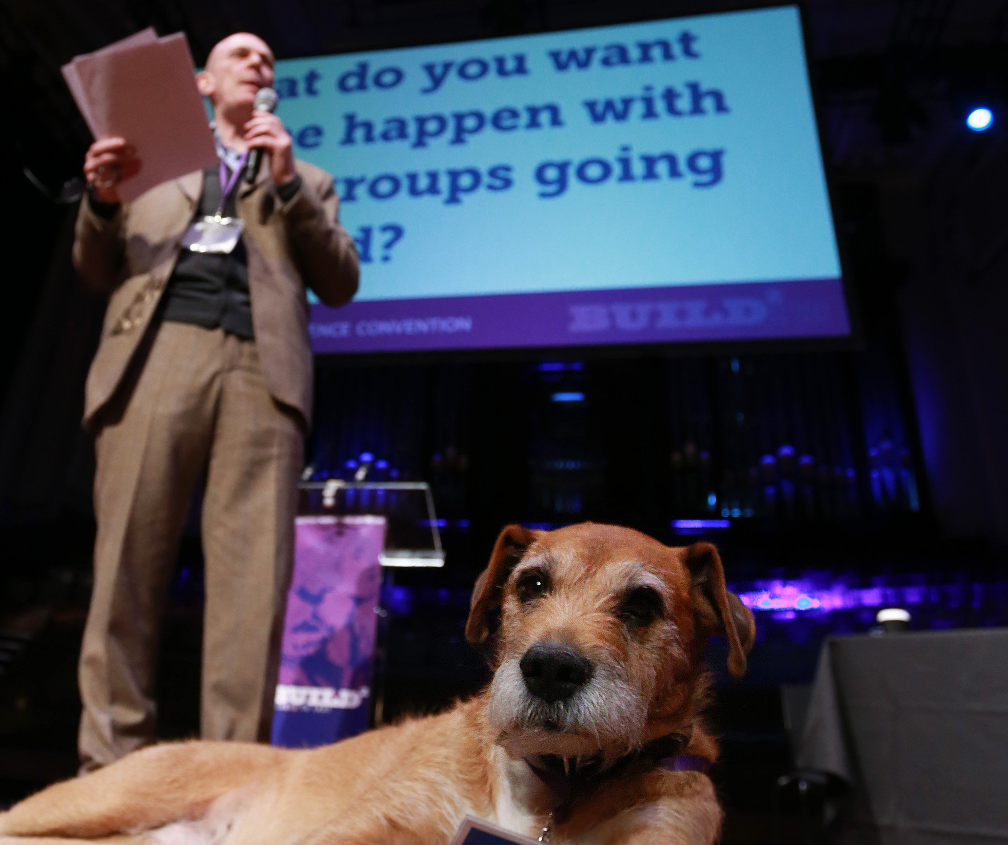 The Wee Ginger Dug will be on the road this year as the grassroots indy movement ramps up its visibility